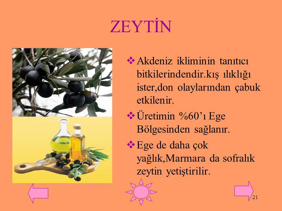 ZEYTİN Akdeniz ikliminin tanıtıcı bitkilerindendir.kış ılıklığı ister,don olaylarından çabuk etkilenir.