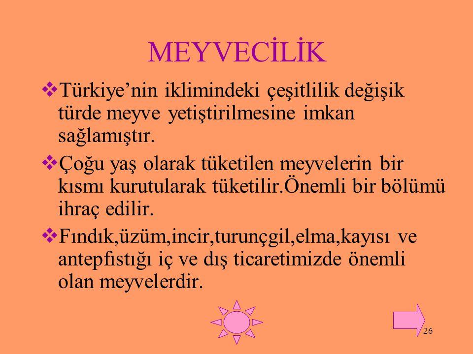 MEYVECİLİK Türkiye'nin iklimindeki çeşitlilik değişik türde meyve yetiştirilmesine imkan sağlamıştır.