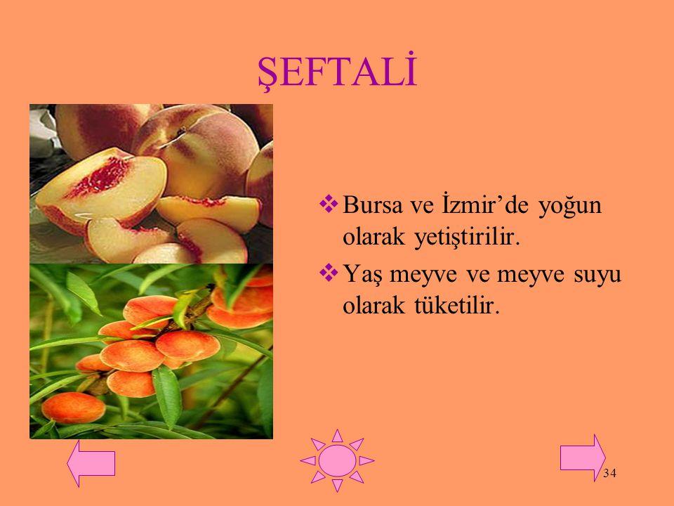 ŞEFTALİ Bursa ve İzmir'de yoğun olarak yetiştirilir.
