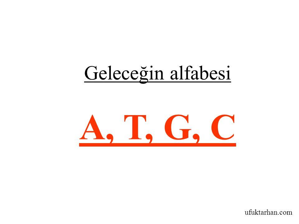Geleceğin alfabesi A, T, G, C