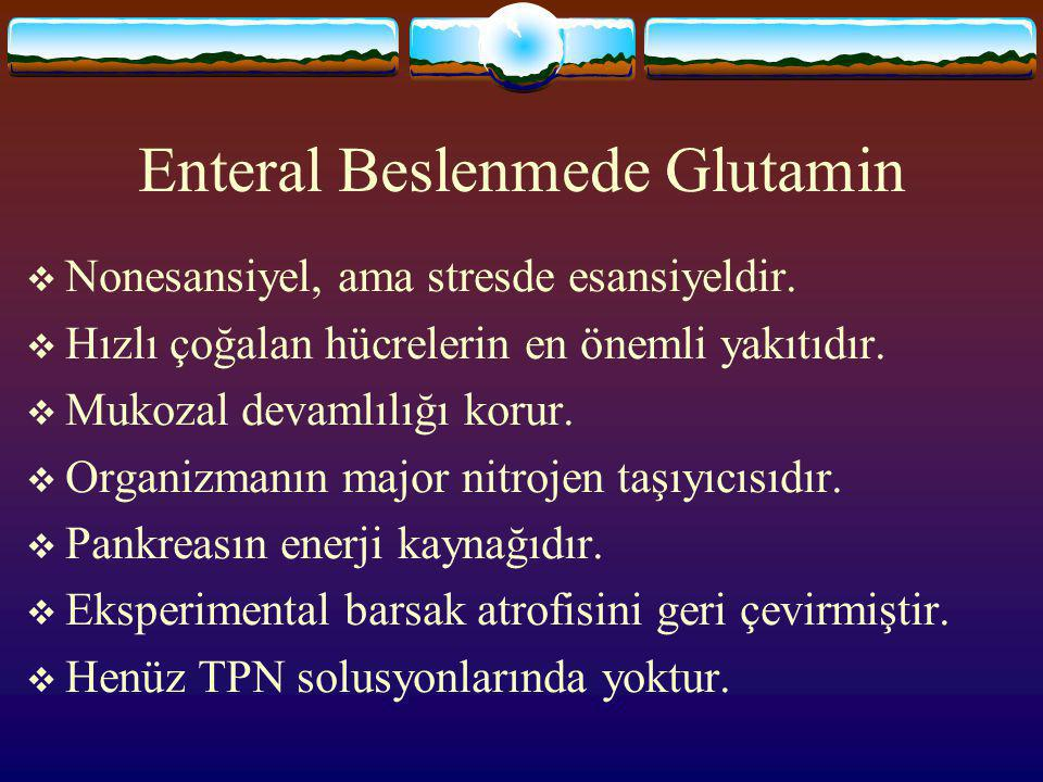 Enteral Beslenmede Glutamin