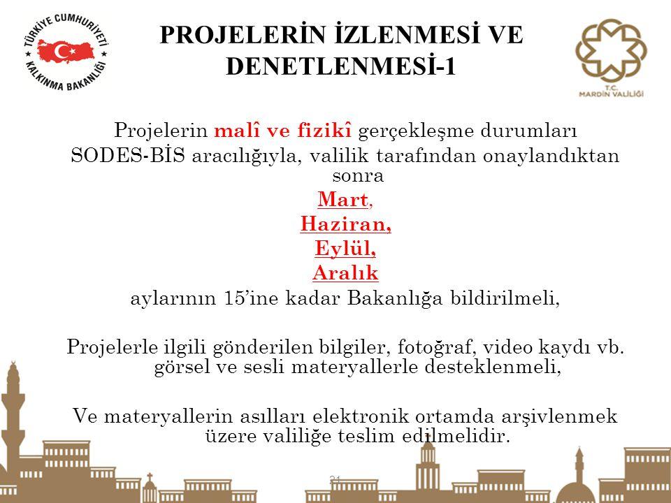 PROJELERİN İZLENMESİ VE DENETLENMESİ-1