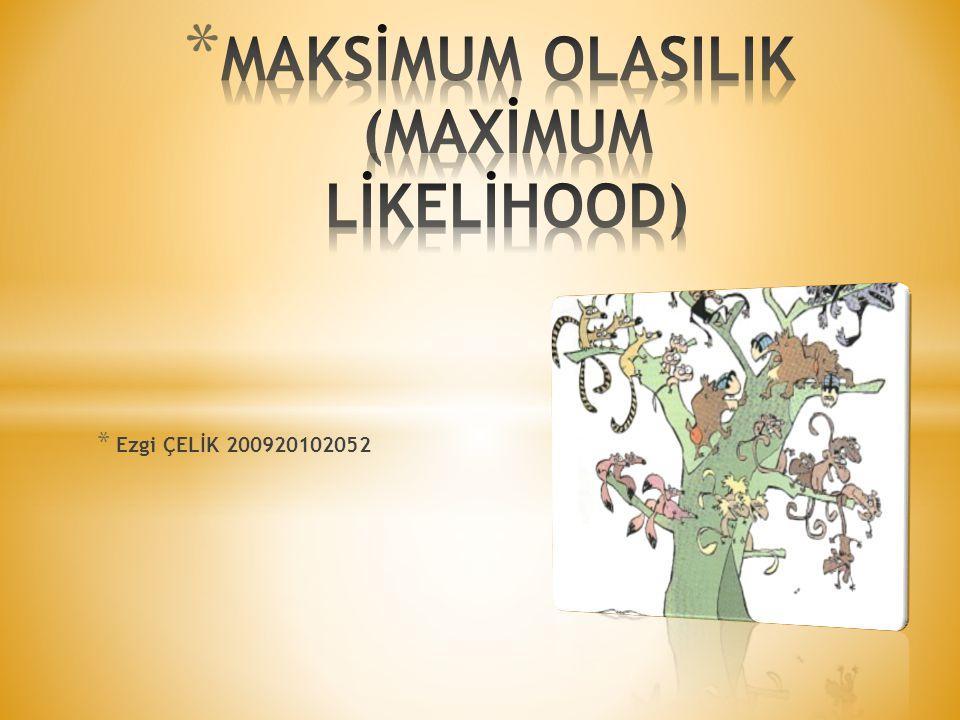 MAKSİMUM OLASILIK (MAXİMUM LİKELİHOOD)