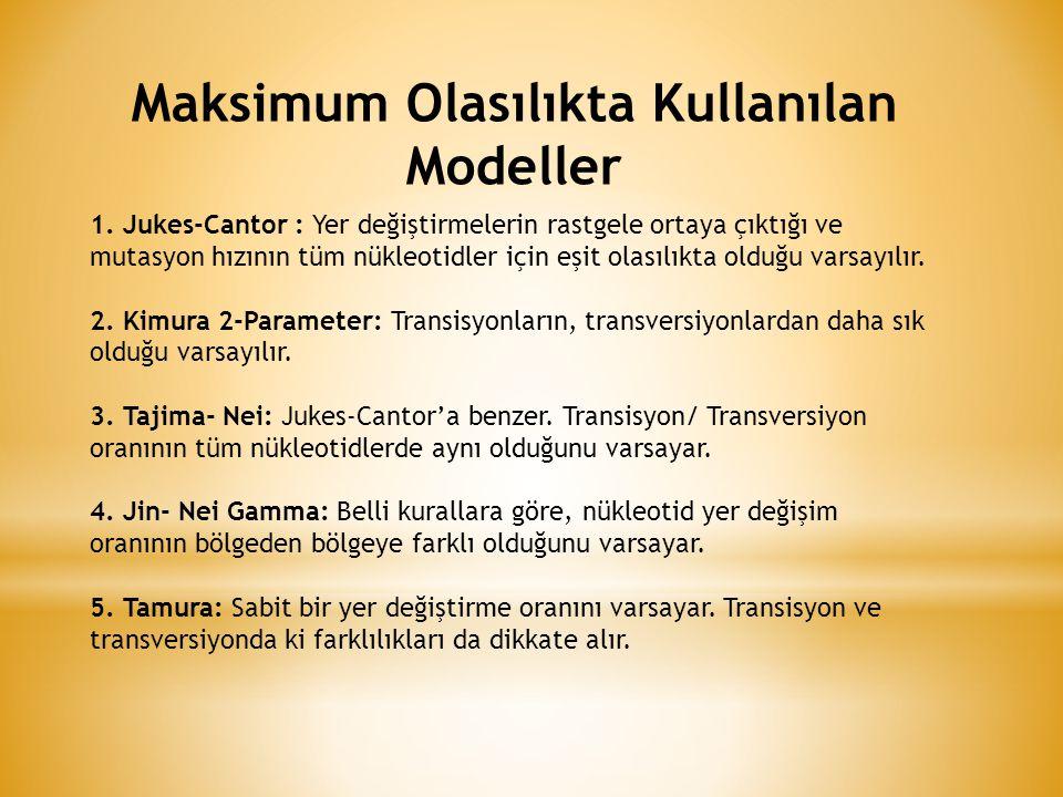 Maksimum Olasılıkta Kullanılan Modeller