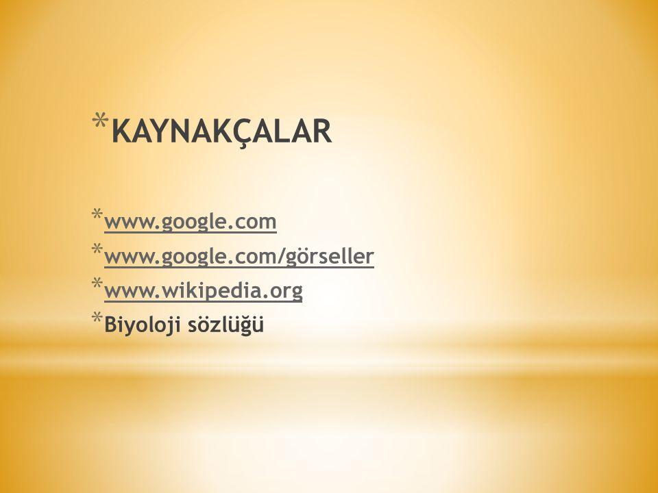 KAYNAKÇALAR www.google.com www.google.com/görseller www.wikipedia.org