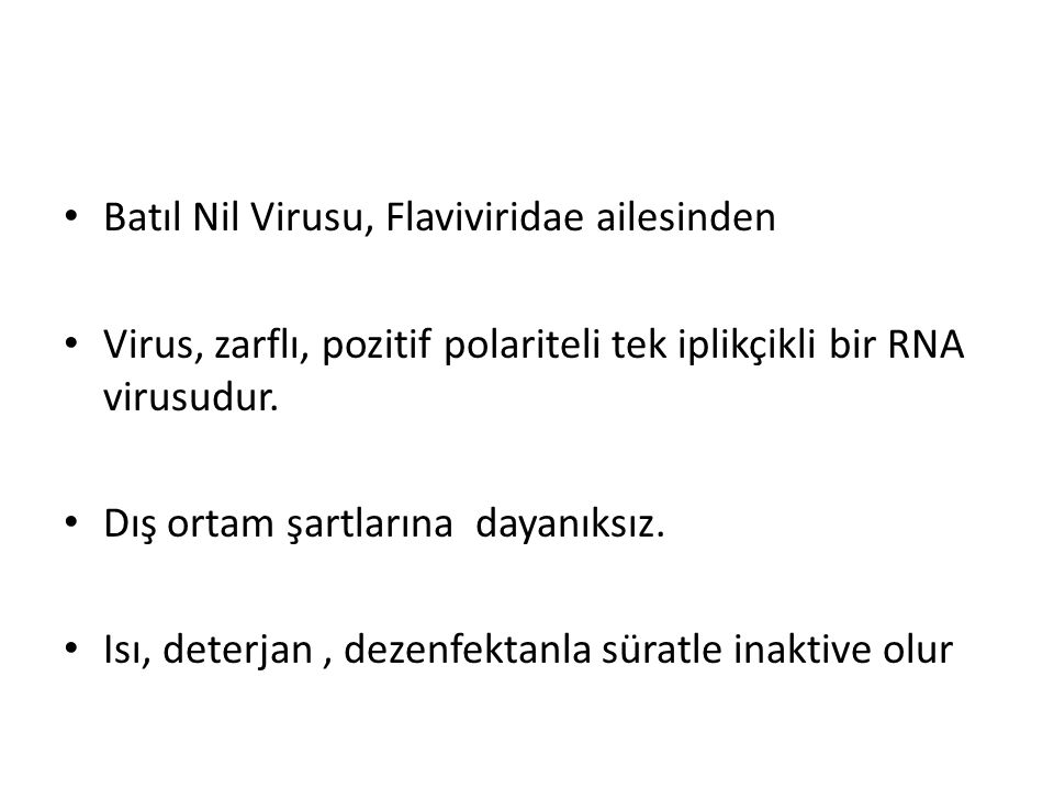 Batıl Nil Virusu, Flaviviridae ailesinden