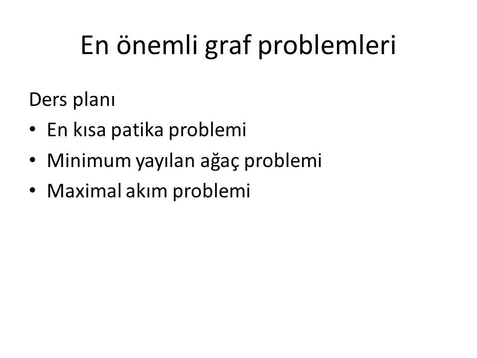 En önemli graf problemleri