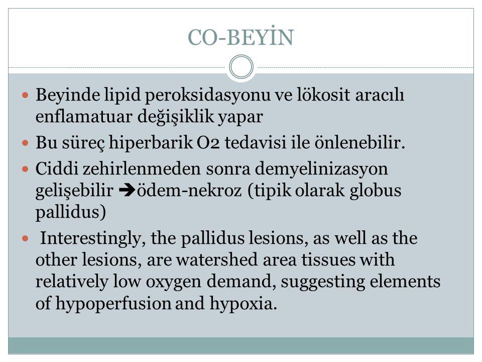 CO-BEYİN Beyinde lipid peroksidasyonu ve lökosit aracılı enflamatuar değişiklik yapar. Bu süreç hiperbarik O2 tedavisi ile önlenebilir.