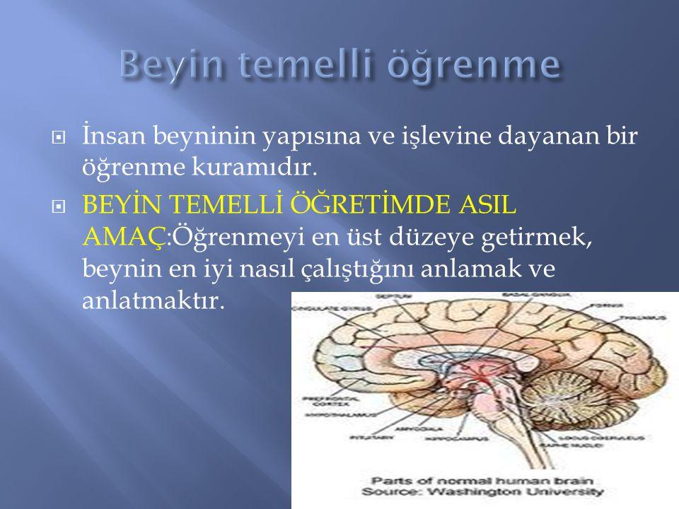 Beyin temelli öğrenme İnsan beyninin yapısına ve işlevine dayanan bir öğrenme kuramıdır.