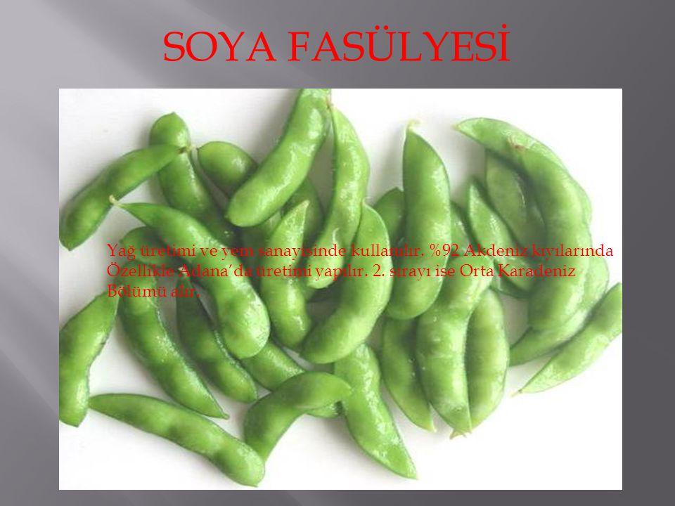 SOYA FASÜLYESİ Yağ üretimi ve yem sanayisinde kullanılır. %92 Akdeniz kıyılarında. Özellikle Adana'da üretimi yapılır. 2. sırayı ise Orta Karadeniz.