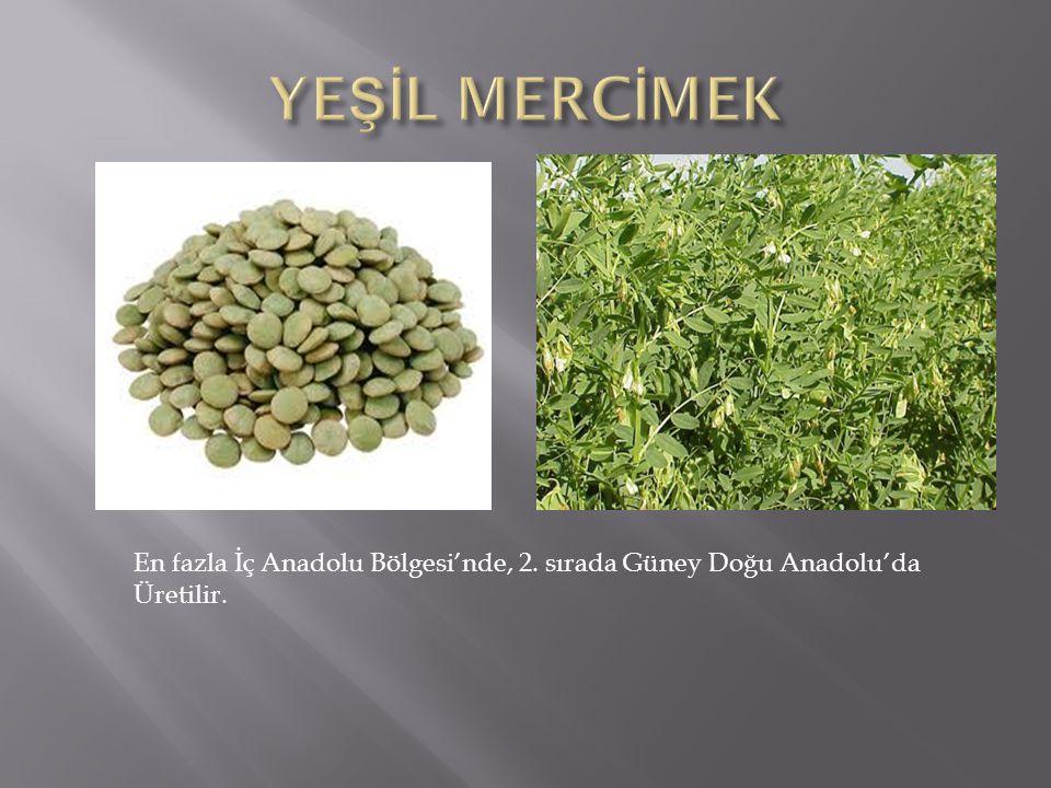 YEŞİL MERCİMEK En fazla İç Anadolu Bölgesi'nde, 2. sırada Güney Doğu Anadolu'da Üretilir.