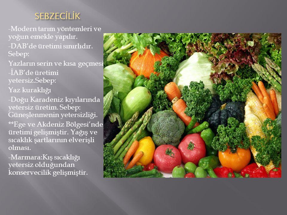 SEBZECİLİK -Modern tarım yöntemleri ve yoğun emekle yapılır.