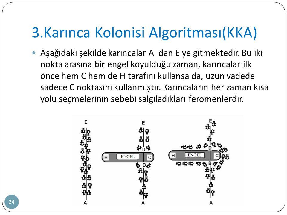 3.Karınca Kolonisi Algoritması(KKA)