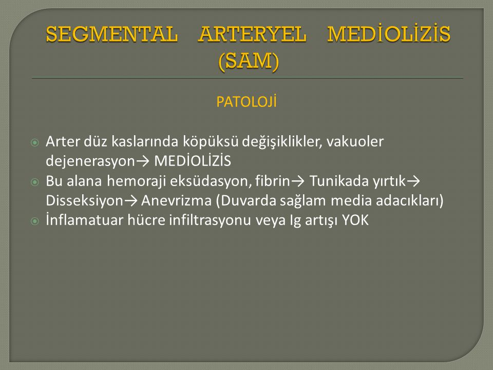 SEGMENTAL ARTERYEL MEDİOLİZİS (SAM)