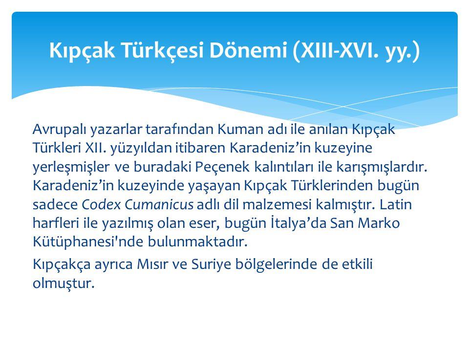 Kıpçak Türkçesi Dönemi (XIII-XVI. yy.)