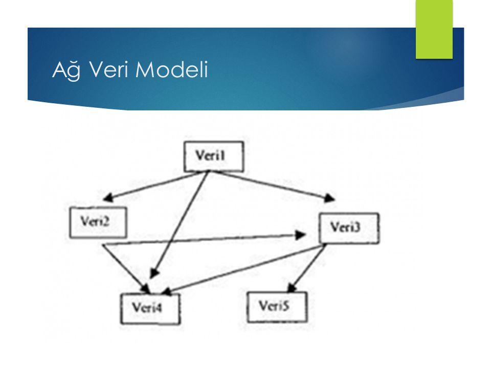 Ağ Veri Modeli