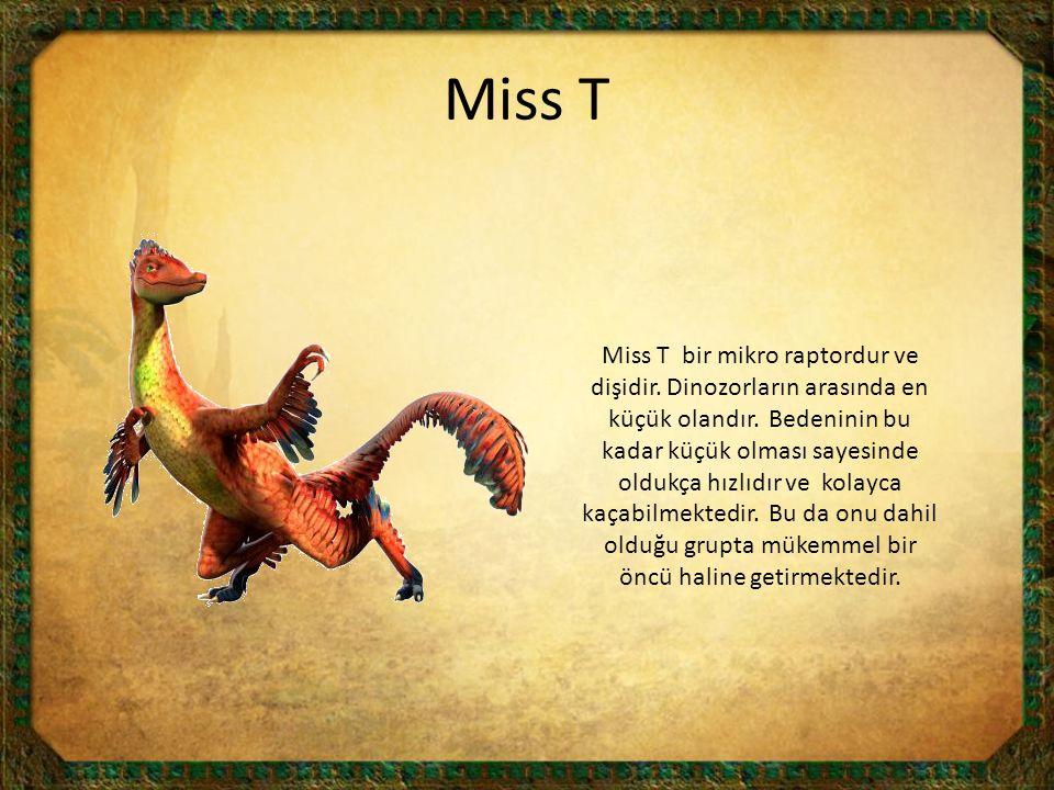 Miss T
