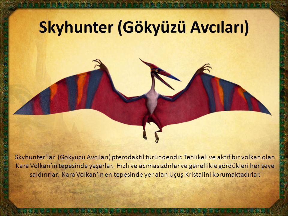 Skyhunter (Gökyüzü Avcıları)