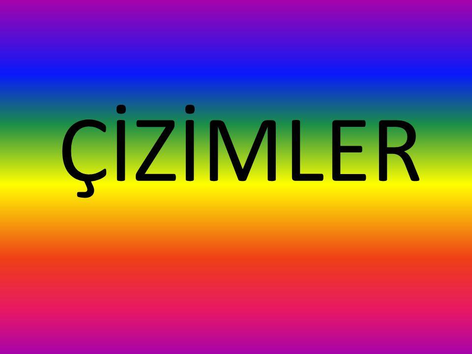 ÇİZİMLER
