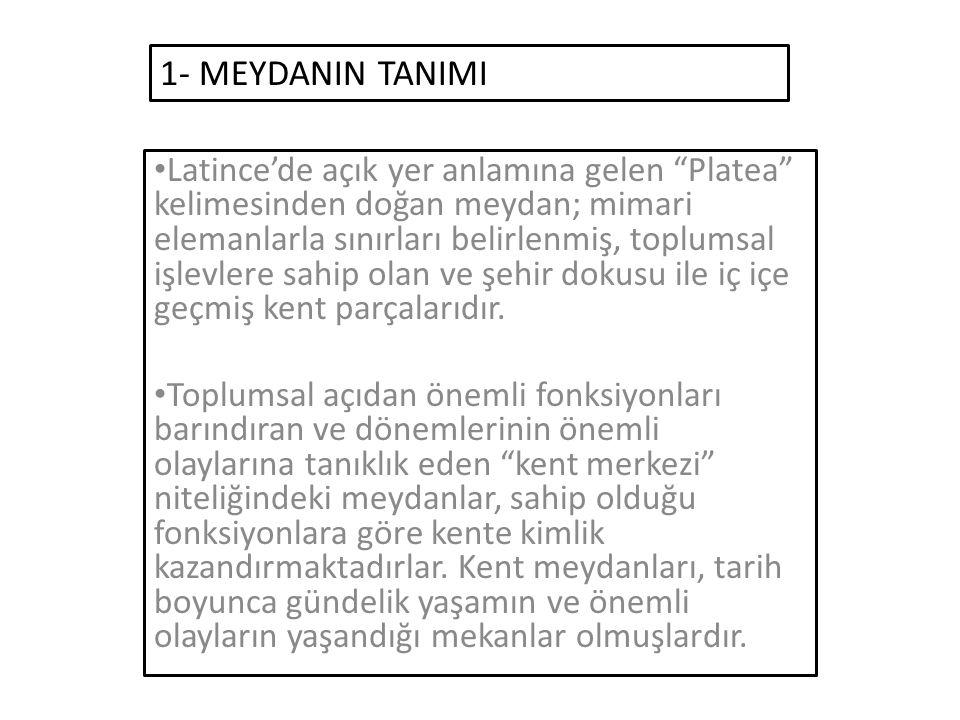 1- MEYDANIN TANIMI