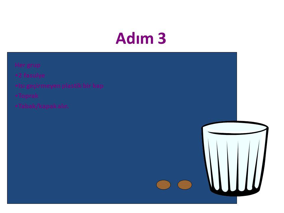 Adım 3 Her grup 2 fasulye Isı geçirmeyen plastik bir kap Toprak
