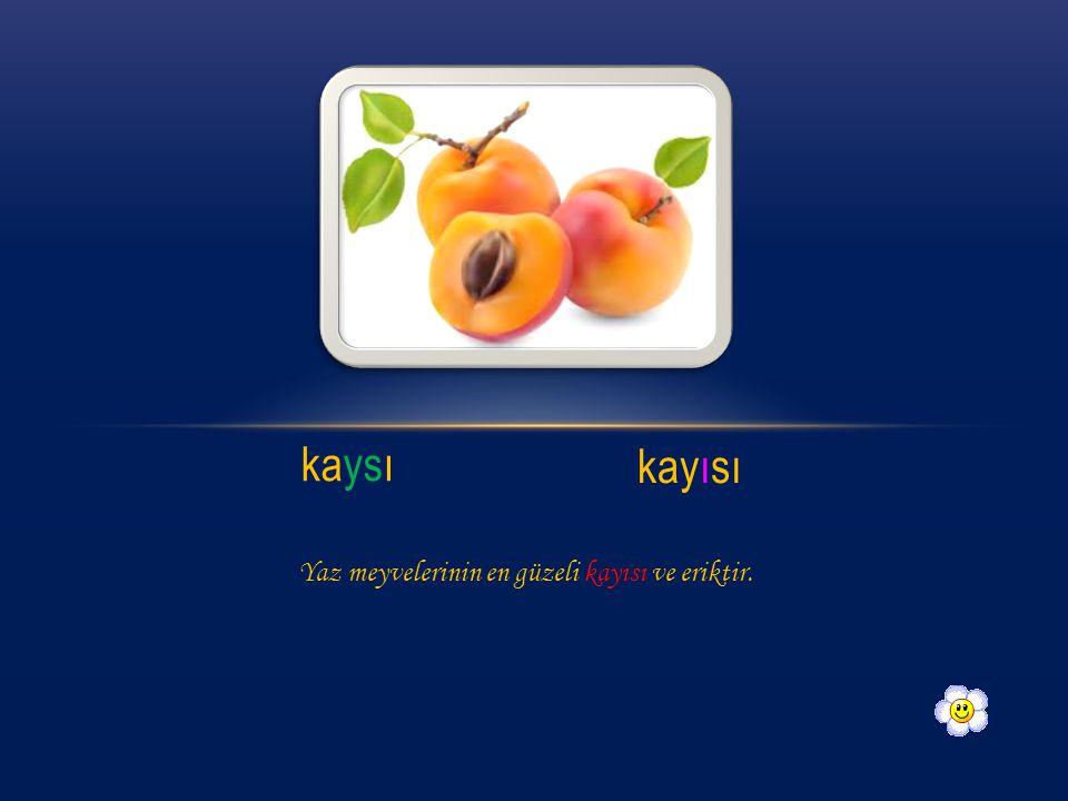 kaysı kayısı Yaz meyvelerinin en güzeli kayısı ve eriktir.