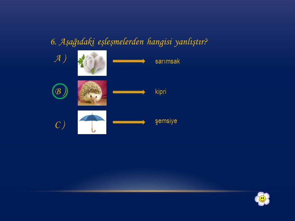 6. Aşağıdaki eşleşmelerden hangisi yanlıştır A )