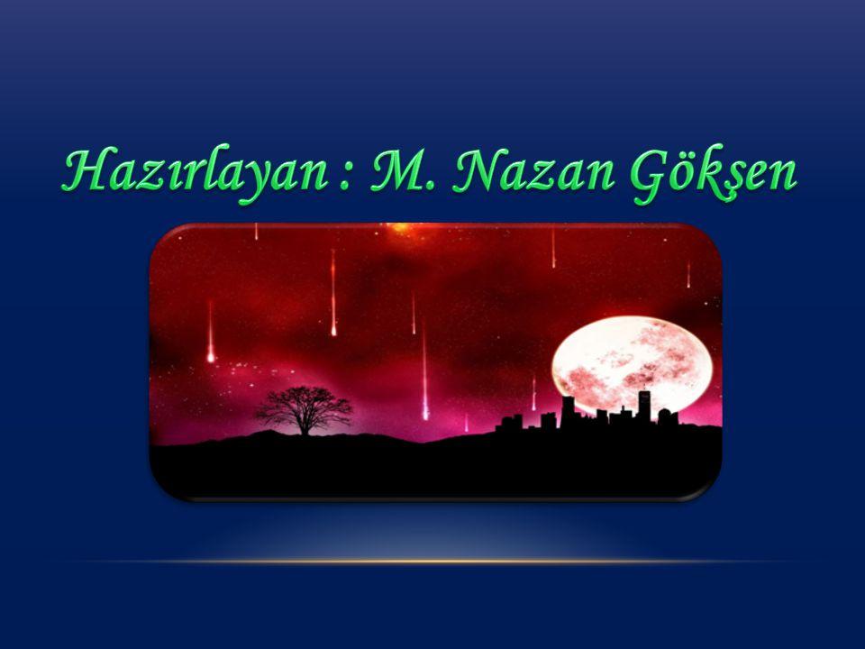 Hazırlayan : M. Nazan Gökşen