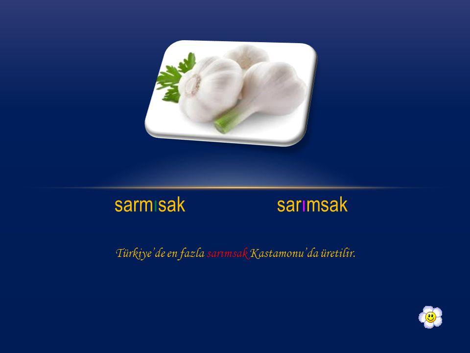 sarmısak sarımsak Türkiye'de en fazla sarımsak Kastamonu'da üretilir.