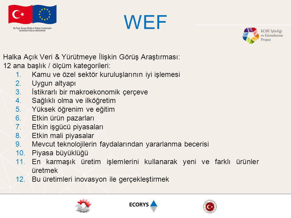 WEF Halka Açık Veri & Yürütmeye İlişkin Görüş Araştırması: