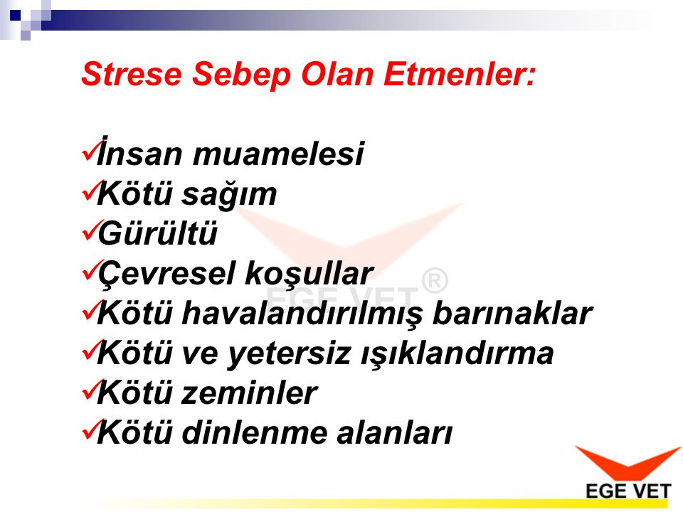 Strese Sebep Olan Etmenler: