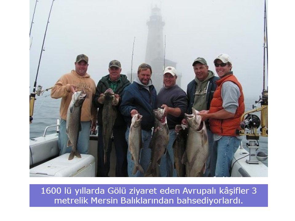 1600 lü yıllarda Gölü ziyaret eden Avrupalı kâşifler 3 metrelik Mersin Balıklarından bahsediyorlardı.