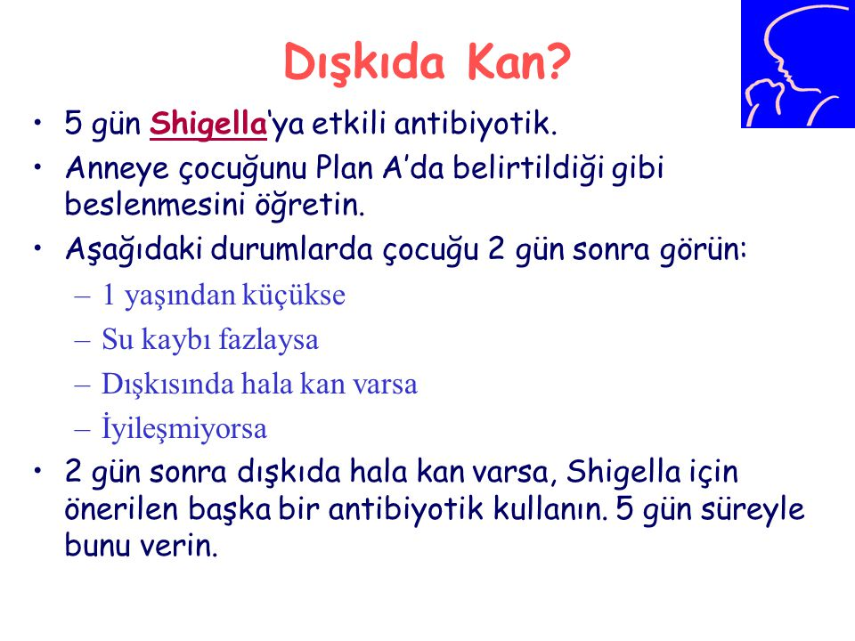 Dışkıda Kan 5 gün Shigella'ya etkili antibiyotik.