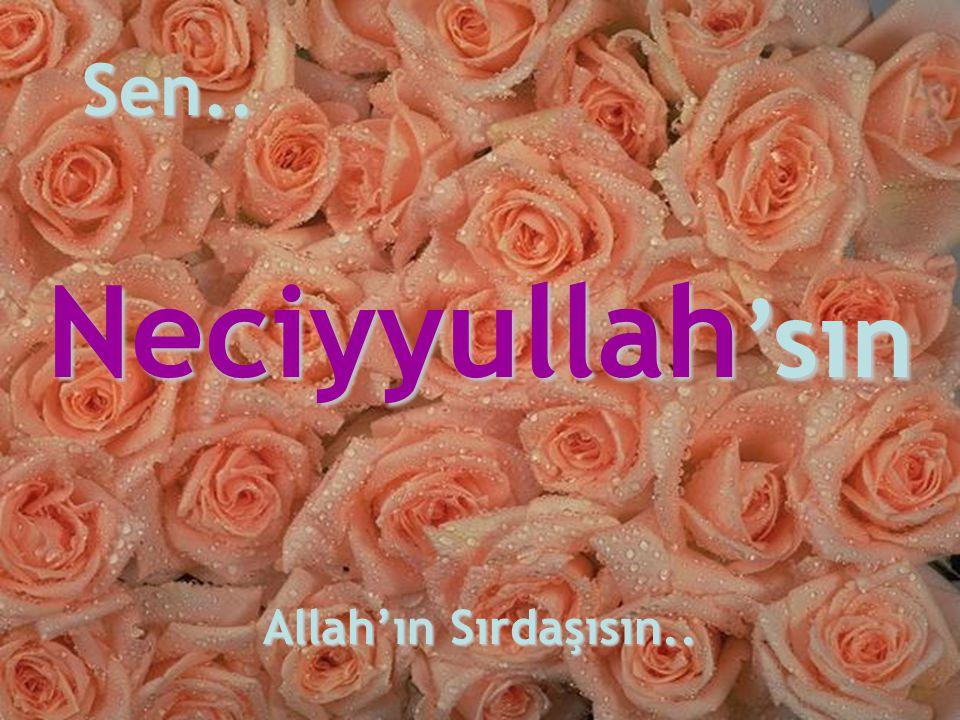 Sen.. Neciyyullah'sın Allah'ın Sırdaşısın..