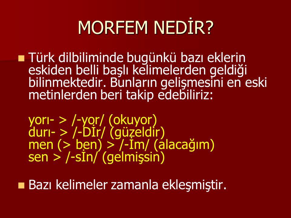 MORFEM NEDİR