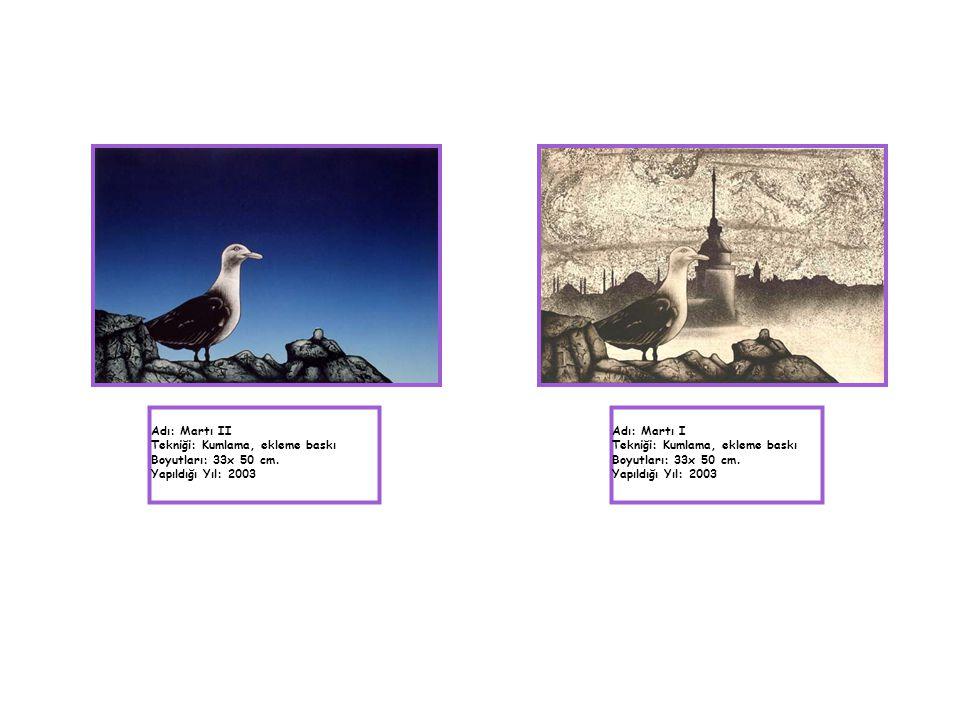 Adı: Martı II Tekniği: Kumlama, ekleme baskı. Boyutları: 33x 50 cm. Yapıldığı Yıl: 2003. Adı: Martı I.
