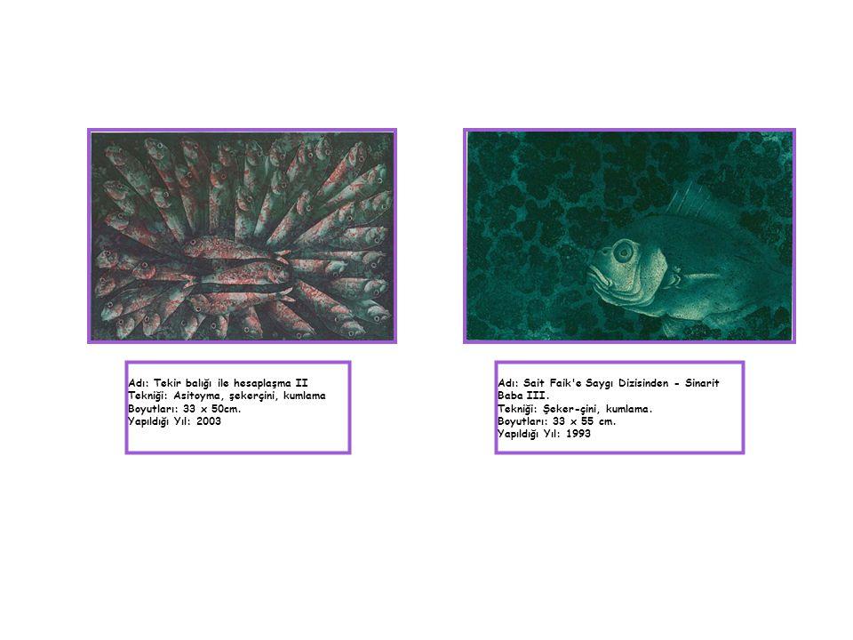 Adı: Tekir balığı ile hesaplaşma II