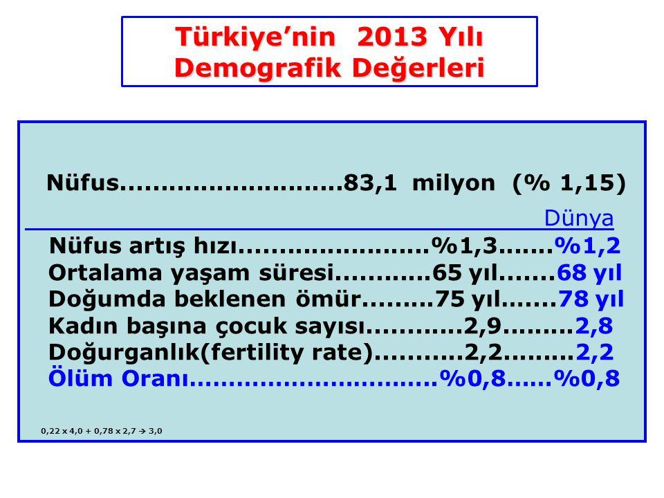 Türkiye'nin 2013 Yılı Demografik Değerleri