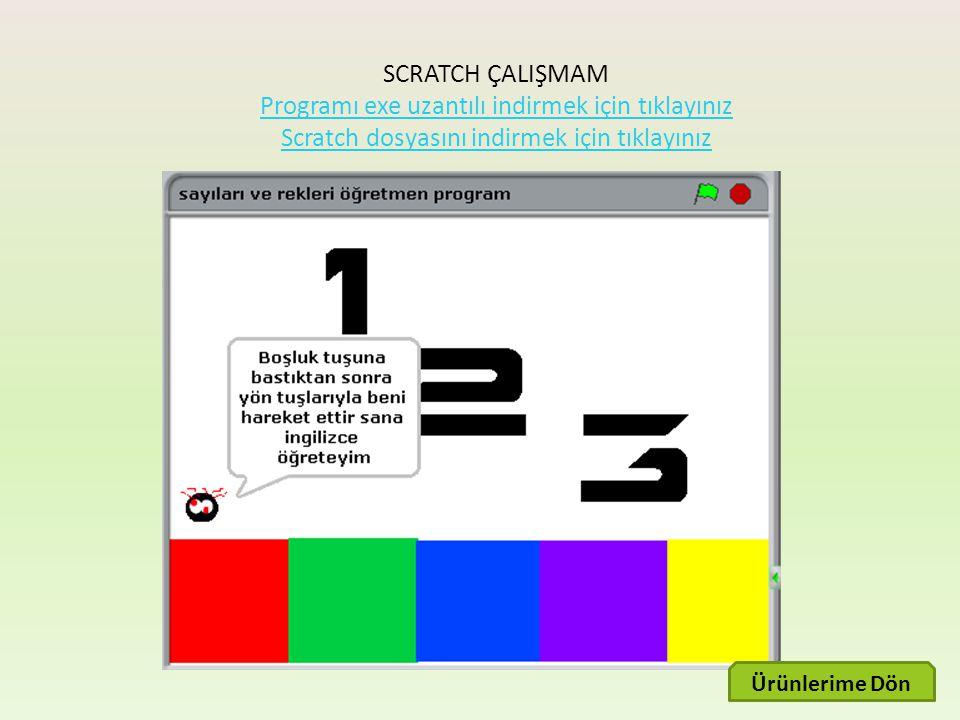 SCRATCH ÇALIŞMAM Programı exe uzantılı indirmek için tıklayınız
