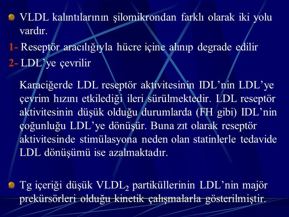 VLDL kalıntılarının şilomikrondan farklı olarak iki yolu vardır.