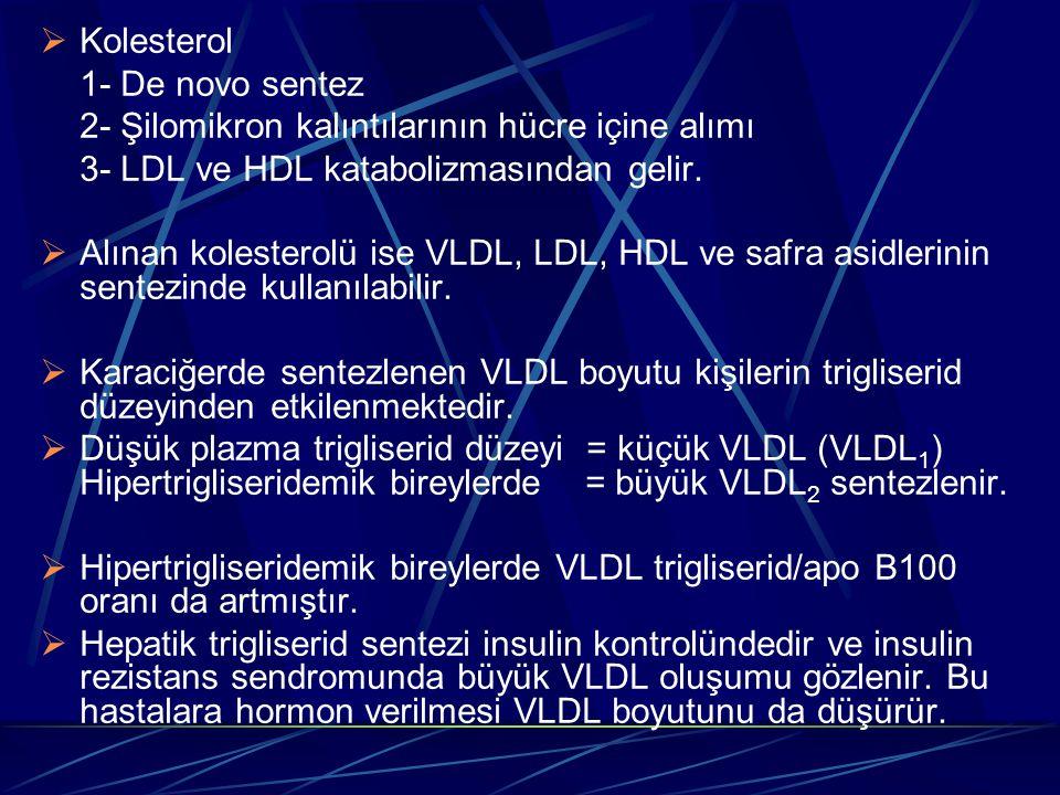 Kolesterol 1- De novo sentez. 2- Şilomikron kalıntılarının hücre içine alımı. 3- LDL ve HDL katabolizmasından gelir.