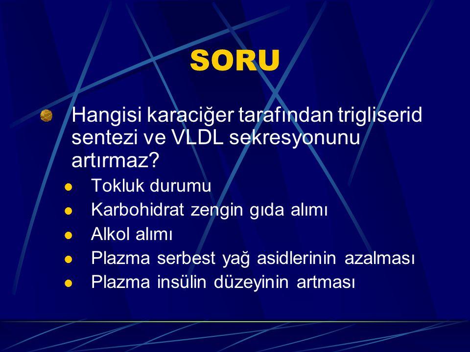 SORU Hangisi karaciğer tarafından trigliserid sentezi ve VLDL sekresyonunu artırmaz Tokluk durumu.