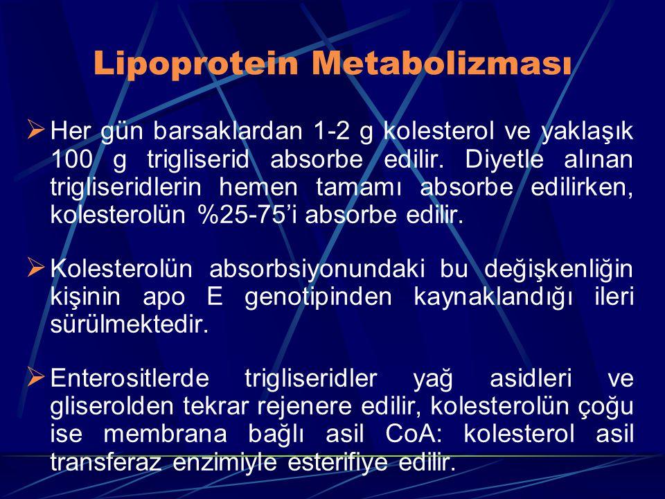 Lipoprotein Metabolizması