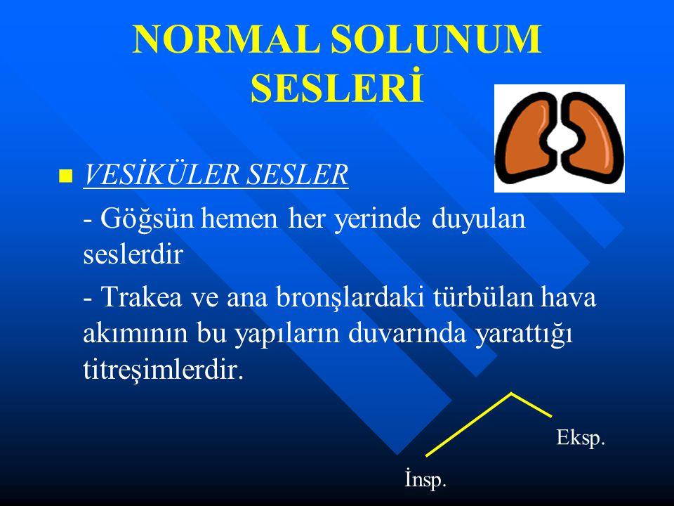 NORMAL SOLUNUM SESLERİ