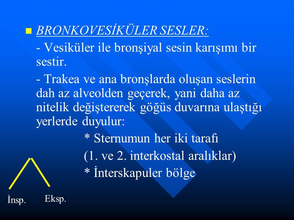 BRONKOVESİKÜLER SESLER: