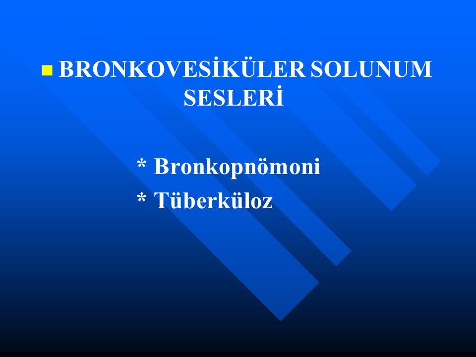 BRONKOVESİKÜLER SOLUNUM SESLERİ