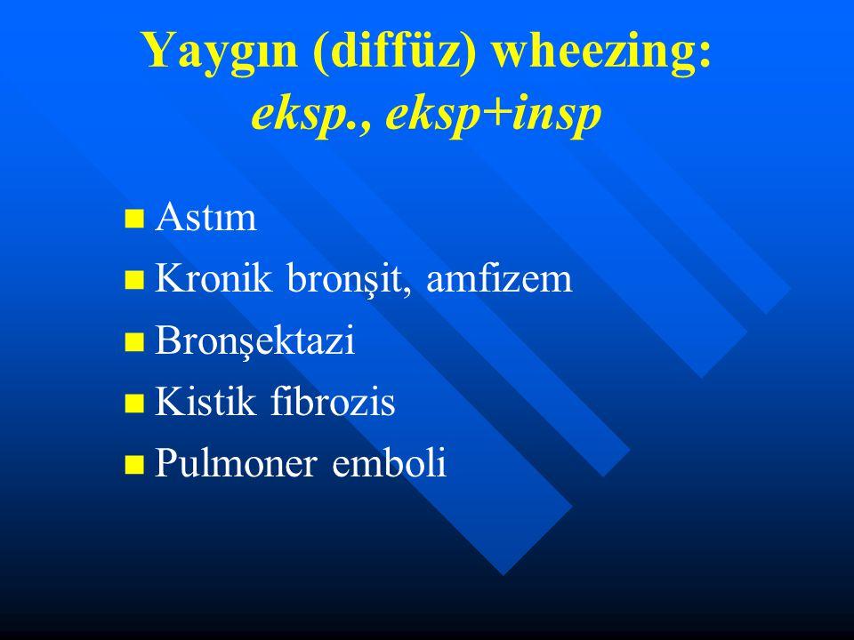 Yaygın (diffüz) wheezing: eksp., eksp+insp