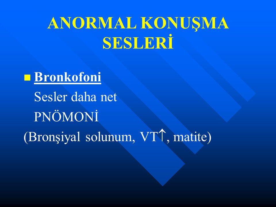 ANORMAL KONUŞMA SESLERİ