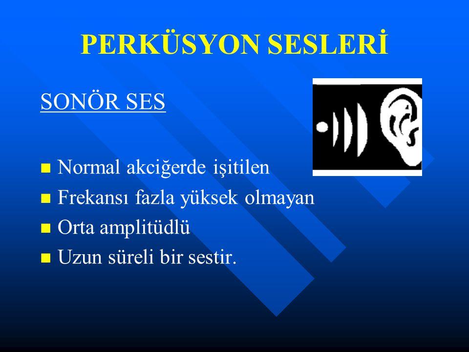 PERKÜSYON SESLERİ SONÖR SES Normal akciğerde işitilen
