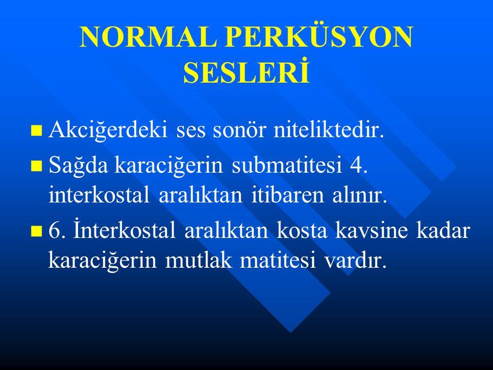 NORMAL PERKÜSYON SESLERİ
